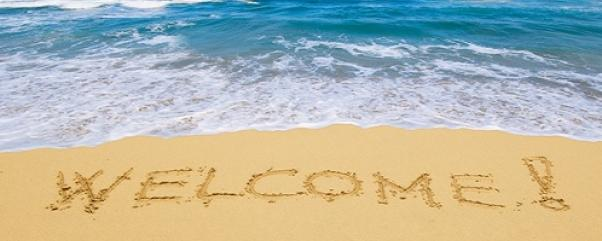 Howtority Welcome visitors 1